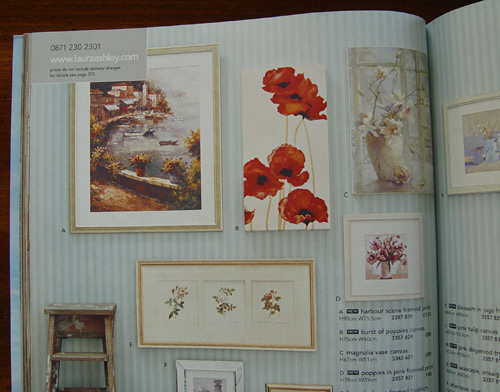Maggies Poppy Painting in the Laura Ashley Catalogue