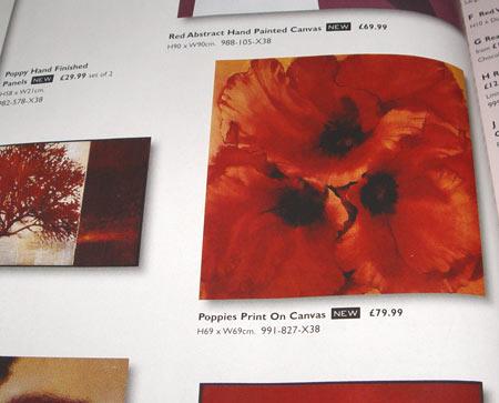 Canvas Poppy print by Next